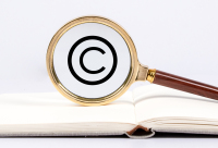 民事权利客体是什么