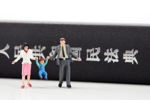 民法典法条适用规则